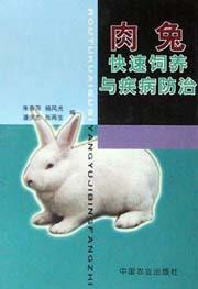 肉兔快速饲养与疾病防治