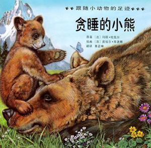 跟随小动物的足迹(2):贪睡的小熊