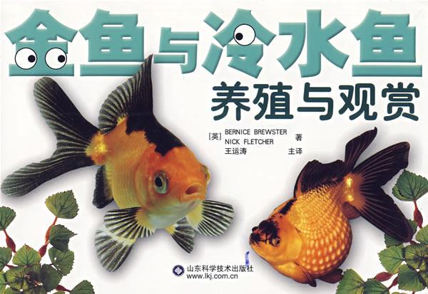 金鱼与冷水观赏鱼的养殖图片