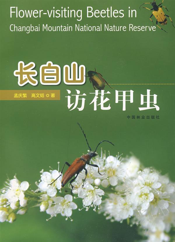 长白山访花甲虫