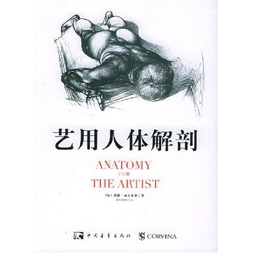 艺术人体解剖