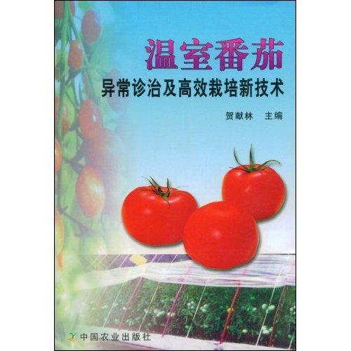 温室番茄异常诊治及高效栽培新技术