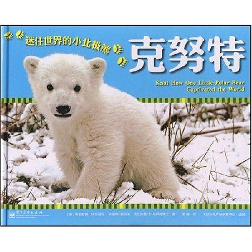 迷住世界的小北极熊;克努特图片