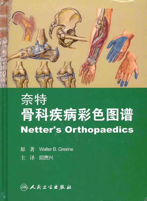奈特骨科疾病彩色图谱图片
