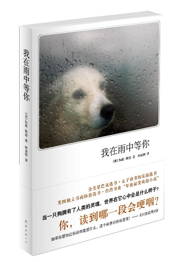 我在雨中等你(新版)图片