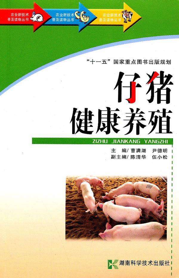 仔猪健康养殖