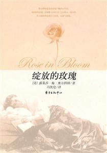 绽放的玫瑰
