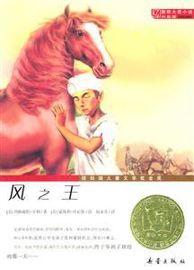 风之王-国际大奖小说升级版
