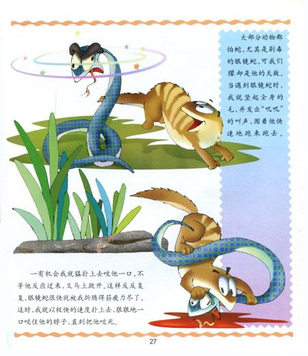 《谁说我笨--奇妙的动物世界》(张继忠温宁)【图片