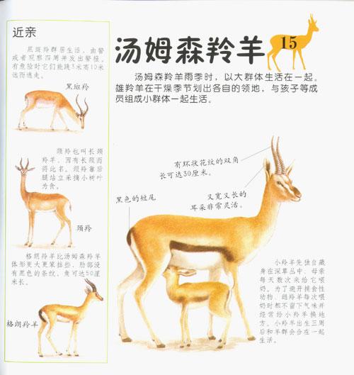 儿童动物认知小百科(全七册)