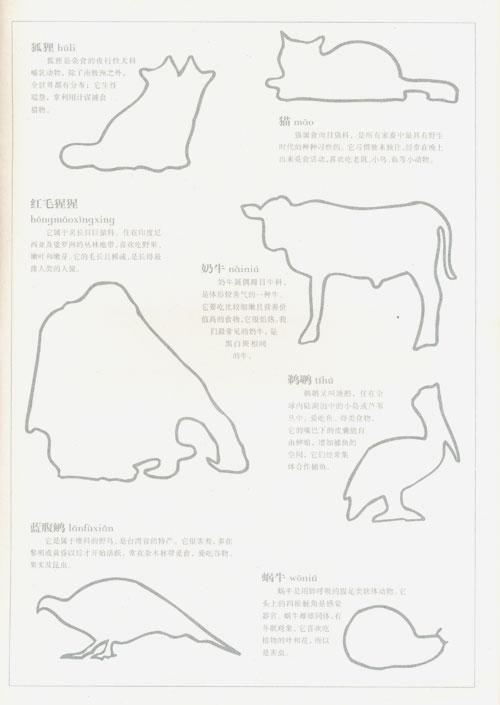 动物/出版人/纪秀荣 著/新蕾出版社