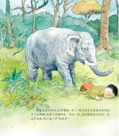 给大象拔刺-沈石溪动物绘本  给大象拔刺-沈石溪动物绘本 内容简介