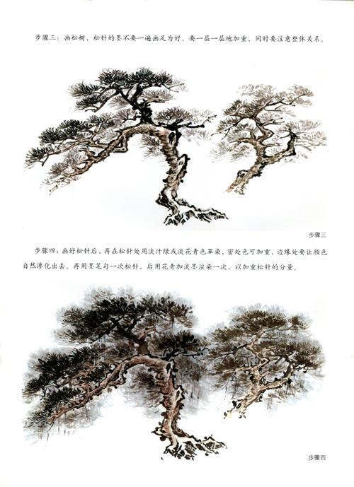 (中国画技法系列)写意花鸟.菊花画法
