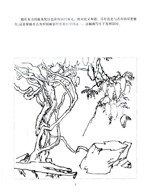 缠绕的藤蔓手绘