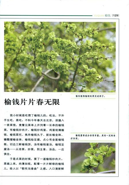 """系""""学习动植物的生存智慧"""