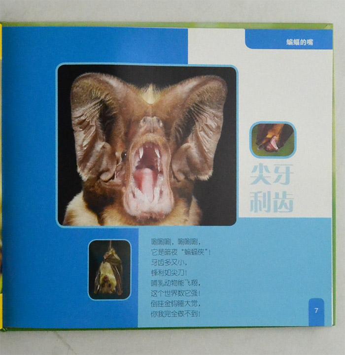 《千奇百怪的动物系列(全四册)》