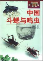 中国斗蟋与鸣虫