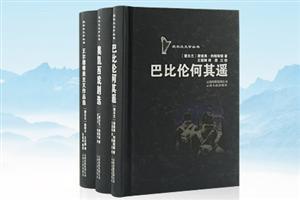 团购:爱尔兰文学丛书3册