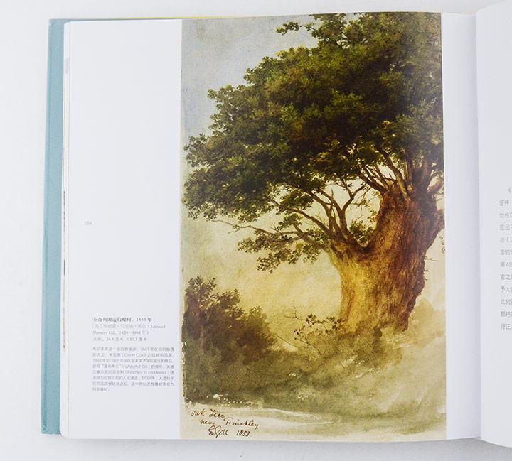 从苹果树,桦树,雪松,桉树,到橡树,柳树和紫杉,一路探来,我们遇见埃及