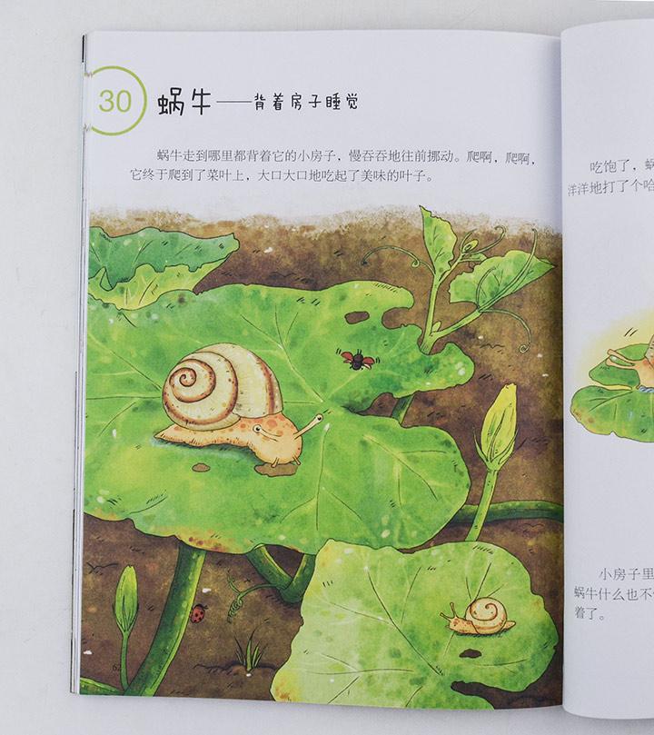 儿童画动物盖房子绘画