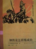 世界长篇小说经典书系:钢铁是怎样炼成的