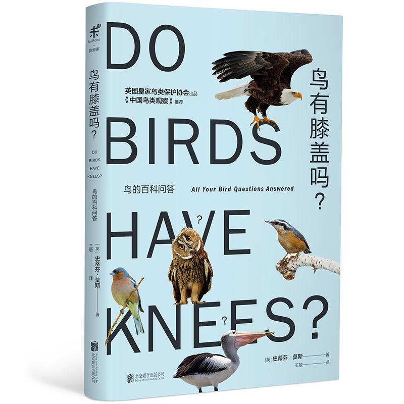 鸟的百科问答:鸟有膝盖吗?