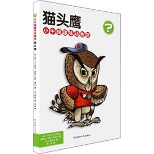 猫头鹰-小牛顿趣味动物馆