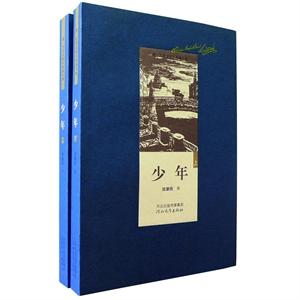 费・陀思妥耶夫斯基全集:少年(套装共2册)