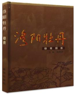 洛阳牡丹-穆青摄影