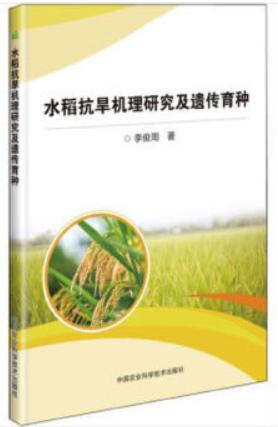 水稻抗旱机理研究及遗传育种